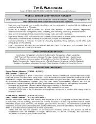 Project Manager Resume Template Experience Work Ooxxooco