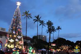 Christmas In Hawaii Pictures Images And Stock Photos  IStockChristmas Tree Hawaii