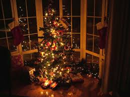 Christmas Tree Display  Photo InformationChristmas Tree In Window