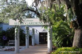 entrance live oak marie selby botanical gardens