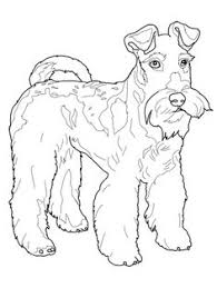 Small Picture West Highland White Terrier favorite Dog Colouring pages