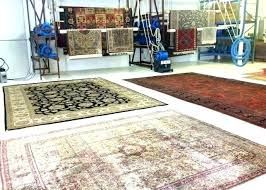 best area rugs for pets ing s rug pet odor removal urine clean cat best area
