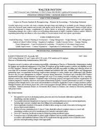 Resume With Executive Summary Executive Summary Resume Resume Samples Pinterest 13