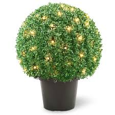 Best 25 Topiary Plants Ideas On Pinterest  Topiaries Decorative Artificial Topiary Trees With Solar Lights