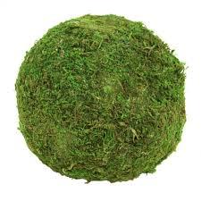 Decorative Moss Balls Koyal Wholesale Stacey Decorative Moss Ball Sculpture Reviews 25