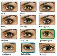 All About The Human Eye Color Chart