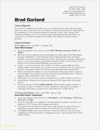 Resume Summary Statement General Resume Objective Examples Ideas