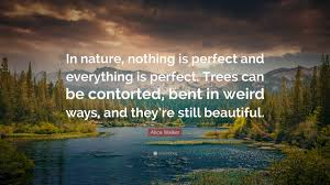 Beautiful Nature Photos With Quotes Best of Beautiful Quotes 24 Wallpapers Quotefancy