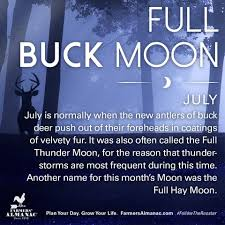 Image result for buck moon