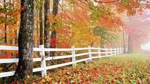 32++ Autumn Wallpaper Desktop Free ...