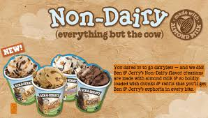 ben jerry s non dairy ice cream