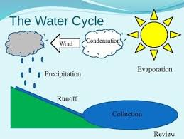 Water Cycle Chart For Class 4 Www Bedowntowndaytona Com