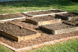 how to start a raised garden over grass