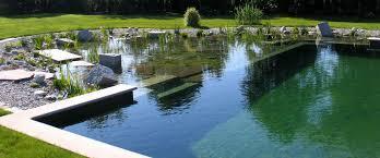swimming pool backyard. Brilliant Backyard Natural Backyard Swimming Pool NSP To Swimming Pool Backyard C