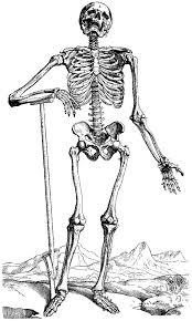 Small Picture Halloween Coloring Pages Skeleton olegandreevme