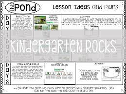 Pond Life Kindergarten Rocks Resources