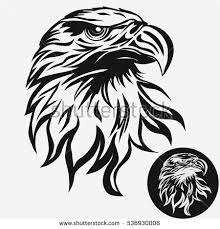 bald eagle template eagle head logo template hawk mascot stock vector 2018 536930008