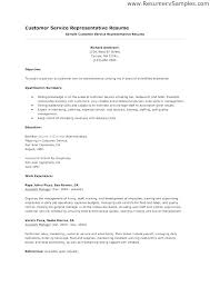 Resume Summary Statement Examples Amazing General Resume Summary Examples Pohlazeniduse