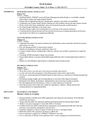 Six Sigma Consultant Resume Samples Velvet Jobs