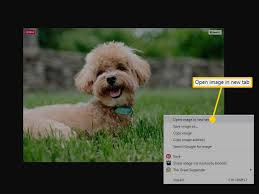 how to use facebook image search