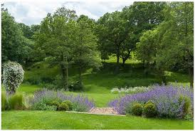 Small Picture Large Garden Design Surrey Planting Landscaping Construction