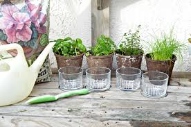 share how we can bring the garden indoors and add a bit greener to the meals we re making with the help of a diy indoor hanging herb garden here s how