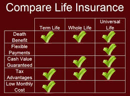 Cheap Whole Life Insurance Quotes Inspiration Download Whole Life Life Insurance Quotes Ryancowan Quotes