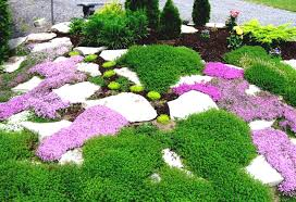 Decorative Stones For Flower Beds Awesome Decorative Rocks For Landscaping Design Ideas And Decor