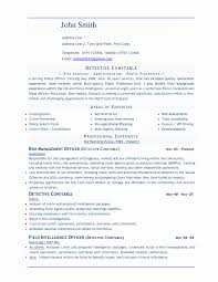 New Detective And Criminal Investigator Sample Resume Resume Sample