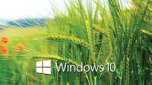 Windows 10 HD Wallpapers - Wallpaper Cave