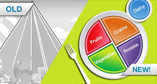 Nutrition Quiz Dietary Guidelines Proteins Fats Grains And More