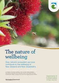 pdf the nature of wellbeing how nature s ecosystem services contribute to the wellbeing of new zealand and new zealanders