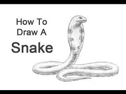 snake head side view drawing. How To Draw Snake King Cobra In Head Side View Drawing