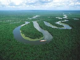 Амазонка самая длинная река в мире Великая Эпоха Амазонка mdash самая длинная река в мире Фото wondnature ru