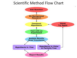 What Every Scientist Should Know The Scientific Method