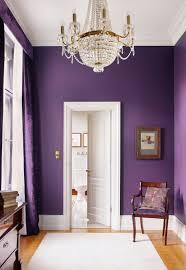 distribuidor en color lila lila el sofisticado