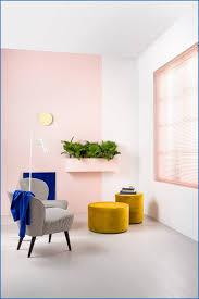 Kleur Muur Slaapkamer Woonkamer 2019 Kiezen Voor Kleuren Op Pamuur