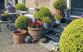 uses for pot plants in your garden