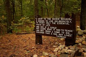 Thoreau Walden Quotes New FileThoreaus Quote Near His Cabin Site Walden Pondjpg Wikimedia