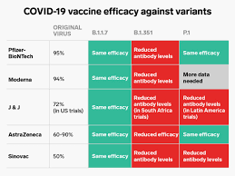Effectiveness of COVID-19 Vaccines for Variants From South Africa, UK