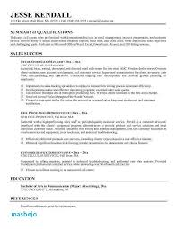 General Professional Summary For Resume Professional Summary For Resume Luxury General Summary For Resume