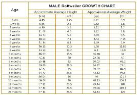Child Weight Chart As Per Age 66 Memorable Baby Growth Chart By Age