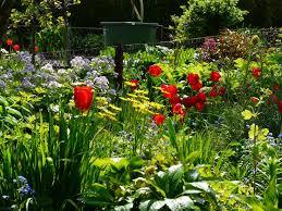 Gartensprüche Freude Am Garten