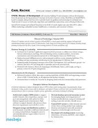 Cto Resume Examples Unique Cto Resume Examples Gorgeous Chief Technology Officer Resume Samples