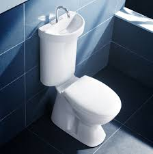 Toilet With Sink Attached Furniture Appealing Porcelain Toilets Design With Sink On Tank