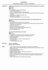It Project Manager Resume Sample Project Management On Resume Inspirational Bank Project Manager 71