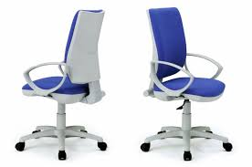 ergonomic office chair for low back pain. image of: best ergonomic office chair for low back pain