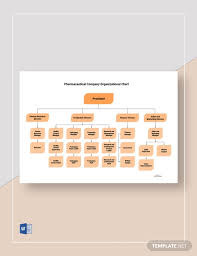 Pharmaceutical Company Organizational Chart 6 Free Pharma Organizational Charts Word Template Net
