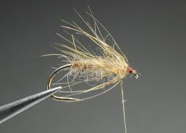 Hendrickson Fly Pattern Awesome Ideas