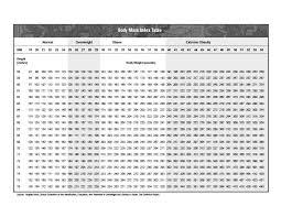 Large Bmi Chart 36 Free Bmi Chart Templates For Women Men Or Kids